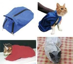 動物病院 猫 連れていく